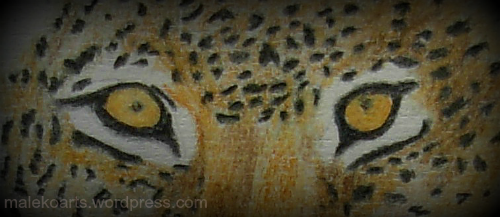 http://wp.me/s2FEx8-leopard