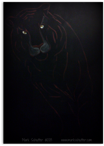 Prowling in the Dark