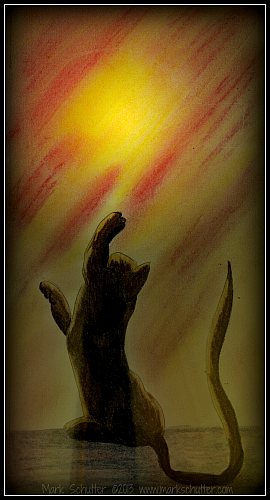 Reaching for the Light