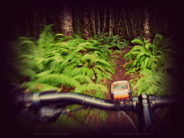 Let it Begin | Mountain Biking | Cycling | Outdoors | Passions |Nature | Adventure
